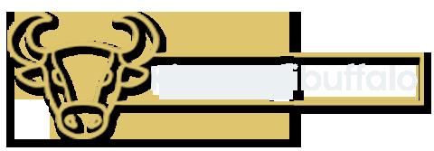 dg104-logo (1)